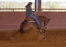 Incredible bargain on a fun and safe reining mare!!!