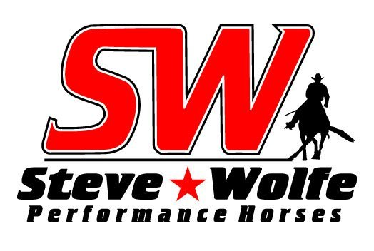 Reining Professionals & Horses For Sale Steve Wolfe Performance Horses in Scottsdale AZ