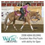 2008 AQHA Gelding by Boomernicker that has done it ALL!