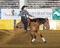 Great Open, non pro, or youth derby horse