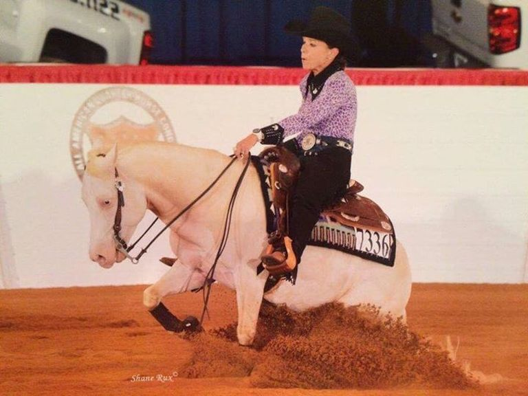 Great Non Pro Horse For Sale