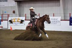 2013 NRHA $$ Earning Gelding by Gee Whiz It Shines x Lady Chexi Nic