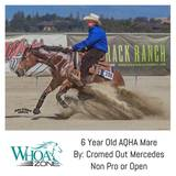 2011 AQHA Mare by Cromed Out Mercedes - NRHA $$ Earner