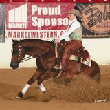 Futurity, stakes & derby champion ready to show NRHA LTE $11k+