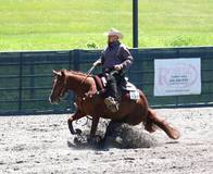 very good minded rookie/green reiner mare