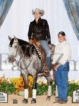 Reining Professionals & Horses For Sale michael hinrichsen in sioux city IA