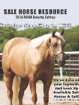 Sale Horse Resource