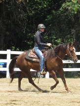 Reining Professionals & Horses For Sale Janie Vanasdal in Mineral City OH